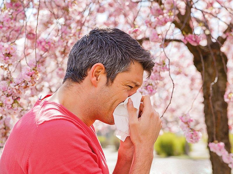 Foto: detailblick-foto/stock.adobe.com/vitamindoctor.com/akz-o
