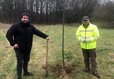 Ökologische Ausgleichsmaßnahmen in Guckheim durchgeführt