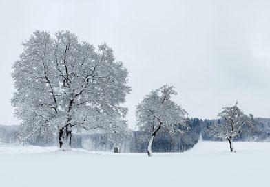 Spaziergang bei Neuschnee im Januar 2021